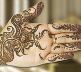 Noor Beautiful Mehndi Design